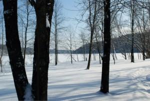 Domaine des Grès -  chalet-louer-paysage-hiver